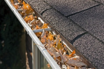 roof cavity cleaning